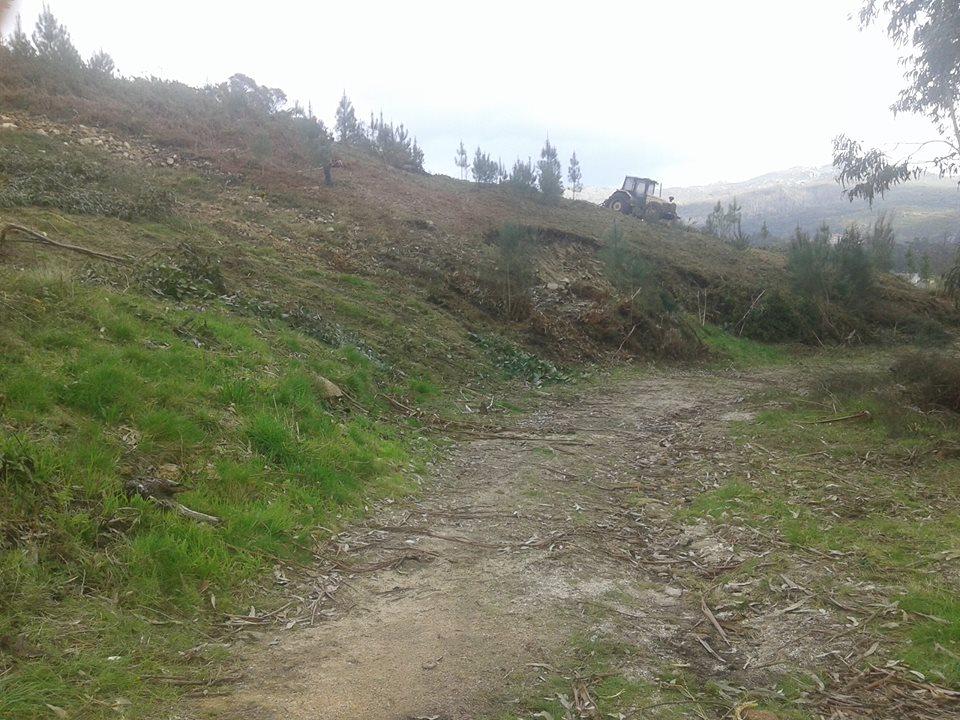 Monte Gallego. 2dm5bm8