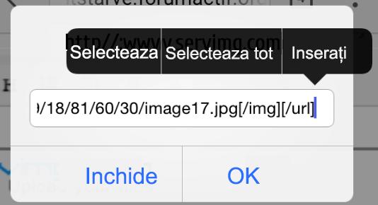 Incarcarea unei imagini prin intermediul Servimg cu smartphone-ul sau tableta 333zoe1