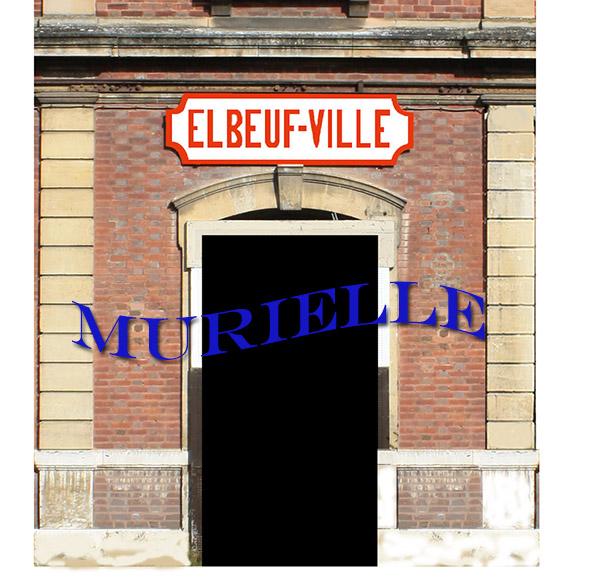N - Gare d'Elbeuf ville (76) Rmpu9i