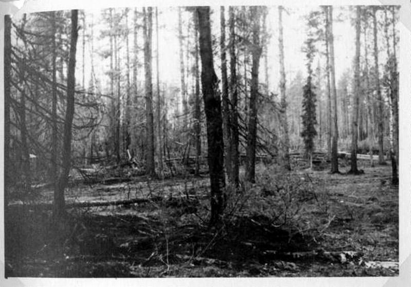 Вермахт на кандалакшском направлении - Страница 10 Vz8nko