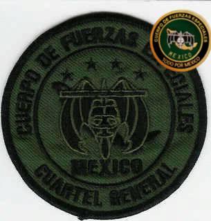 Uniformes del Ejercito y Fuerza Aérea Mexicanos. - Página 9 1zfrgcy