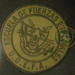 Uniformes del Ejercito y Fuerza Aérea Mexicanos. - Página 9 1znvrlk
