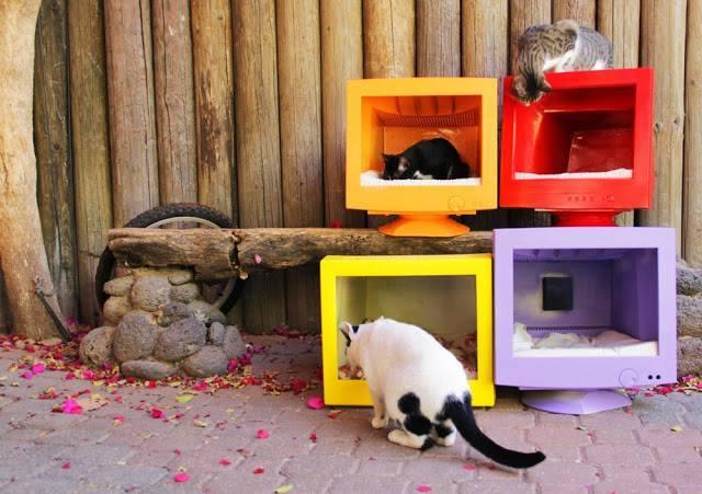 Consulta: ¿cómo constuir  casetas para animales con paneles sandwich? 2dqm2y0