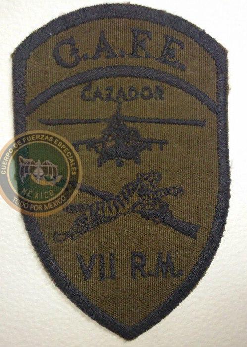 Uniformes del Ejercito y Fuerza Aérea Mexicanos. - Página 9 5do6fl