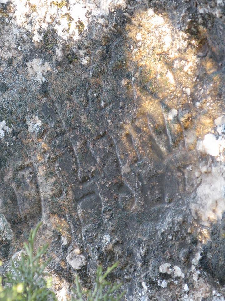 Pido ayuda para saber si estas inscripciones son ibéricas y qué significan W70g0y