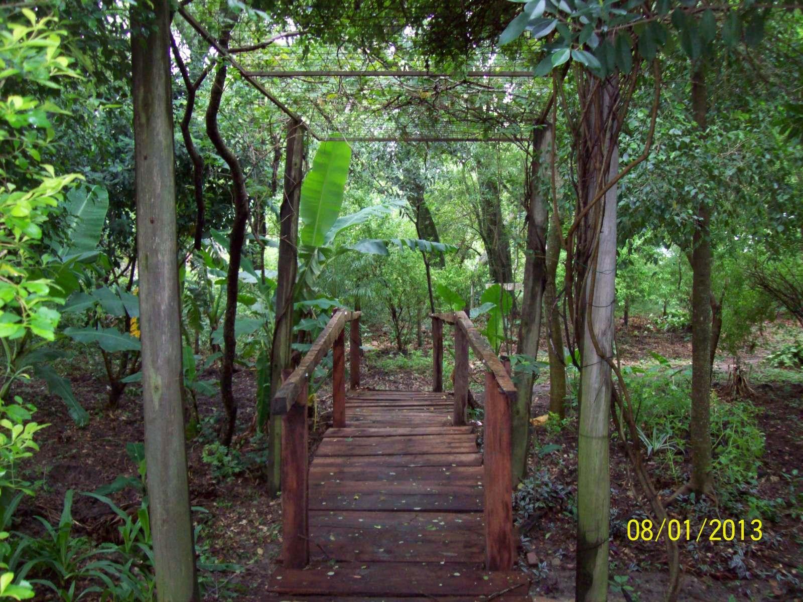 2° Informe Camping  en Herradura (Chuqui Cué) Zn6l4n