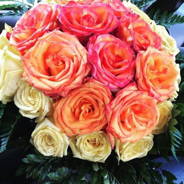 Цветы!!! Где купить подешевле? 13yo3uo