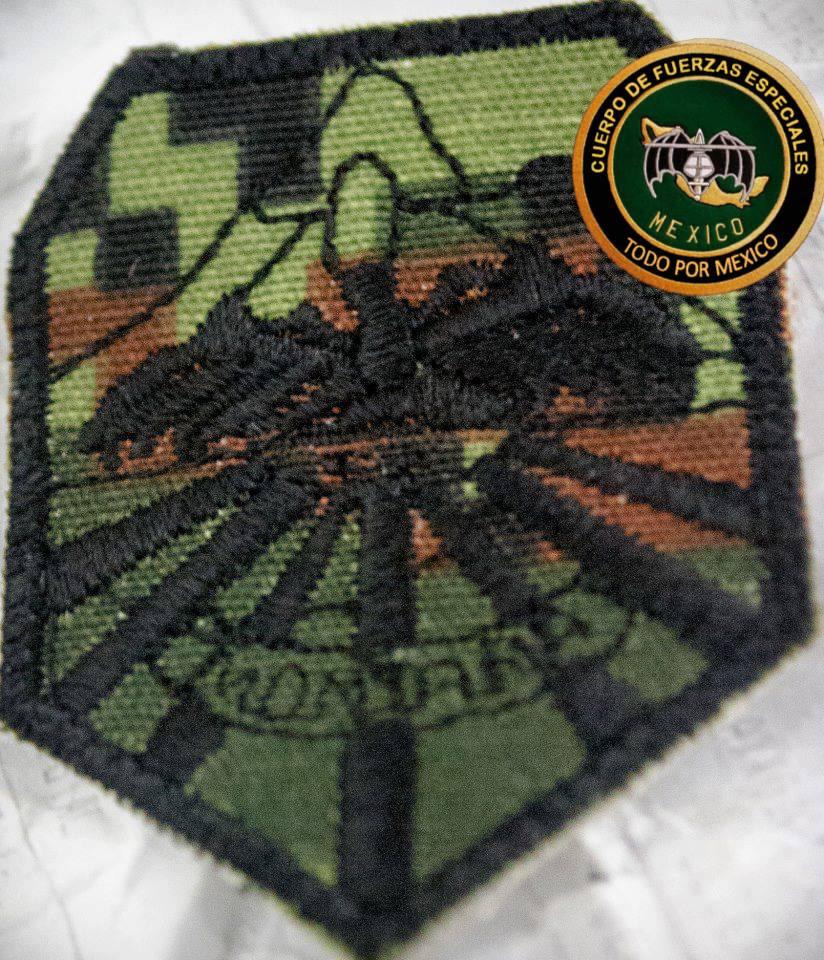 Uniformes del Ejercito y Fuerza Aérea Mexicanos. - Página 9 2418ac5