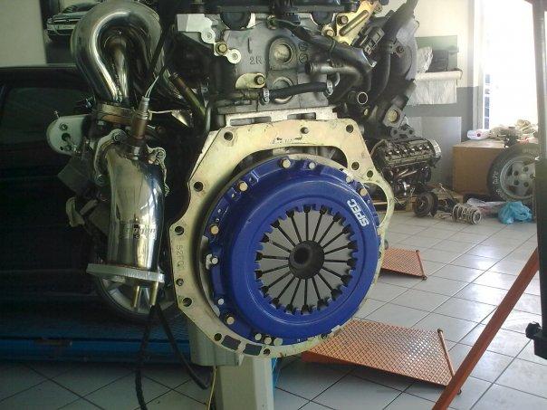 Xenos RPS13  2mzfgo