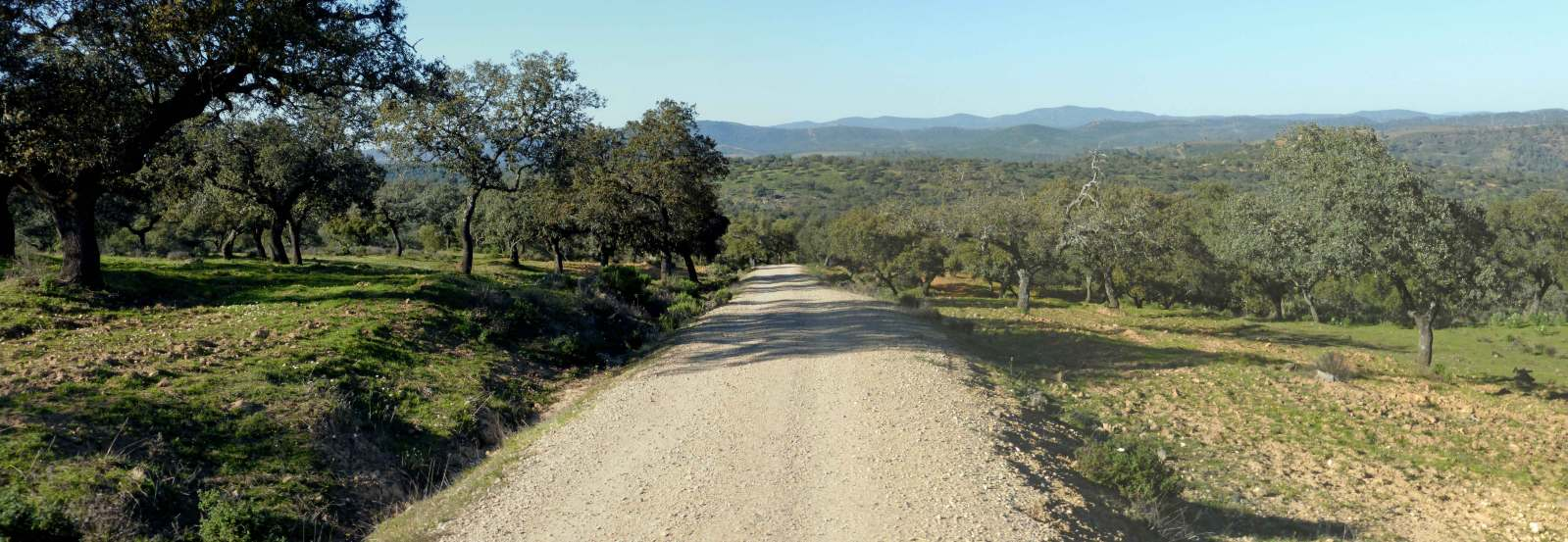 Vía de la Plata-Camino Sanabrés (Sevilla-Santiago). Eqovuh