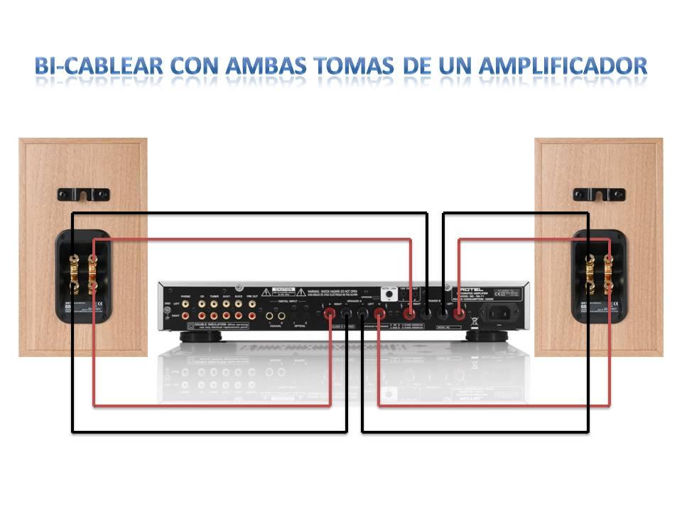 Ayuda para conexionar Cajas B&W 685 s2 con Rotel RA-11
