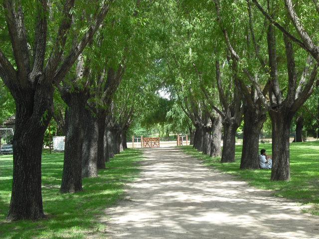 """Camping """"El Faro"""" - Arroyo de los Patos Vy2wyf"""