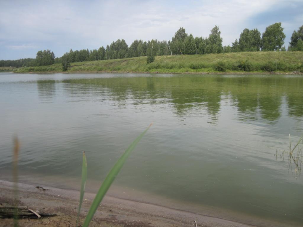Кубок Курганской области по ловле спиннингом с берега. 5-6 сентября 2015 года. 17wltl