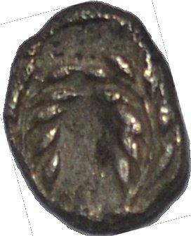 Dióbolo de Elaia, Aiolis. 450-400 a. C. Dedicado a los Maestros Monedas62 y Chencho. 287jjpz