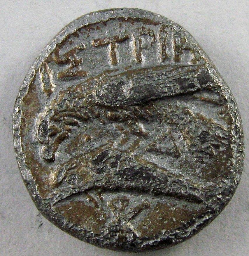 Dracma de Istros 28k2b9g