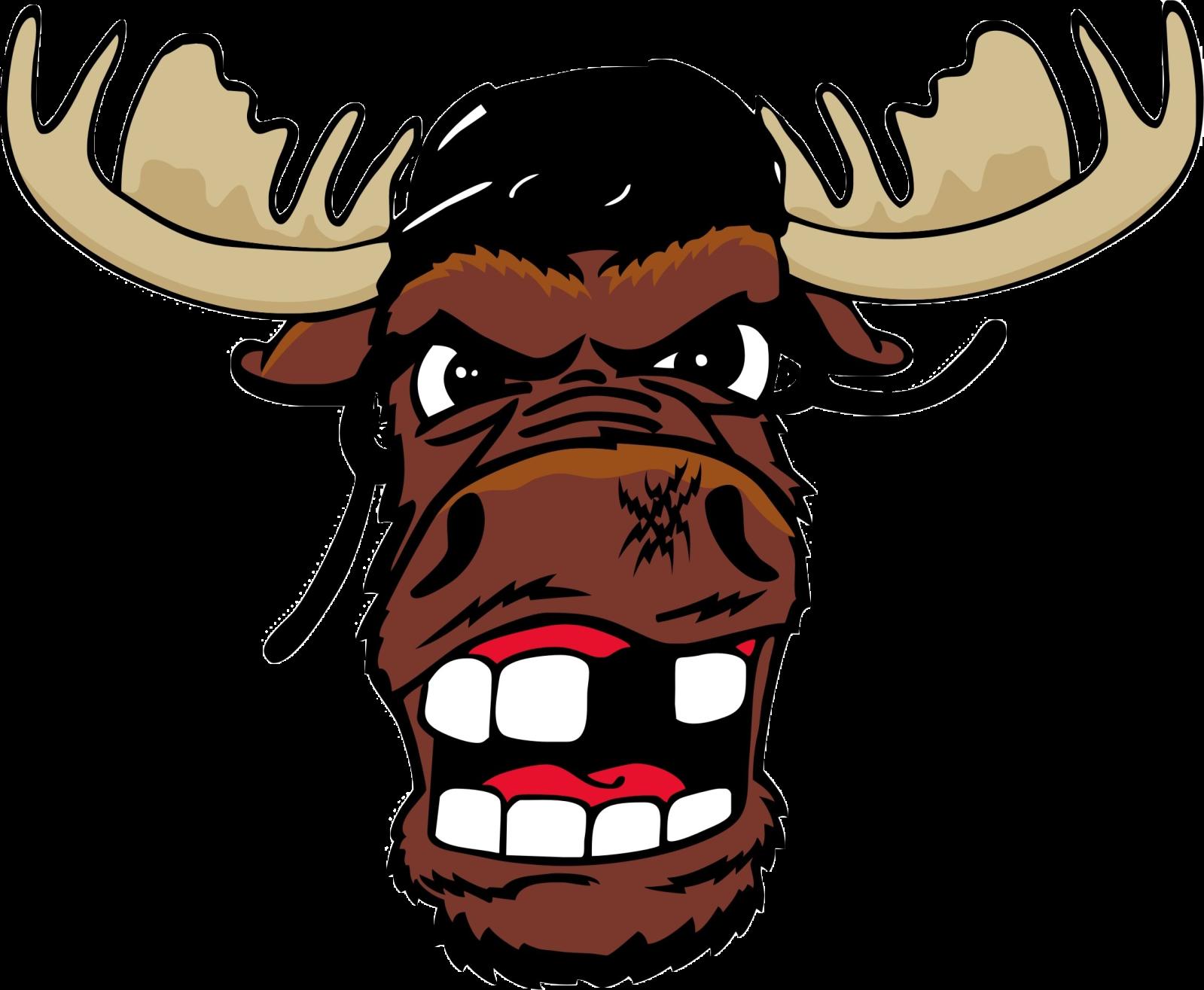 Līgas un Komandu logo 2d2bx1f