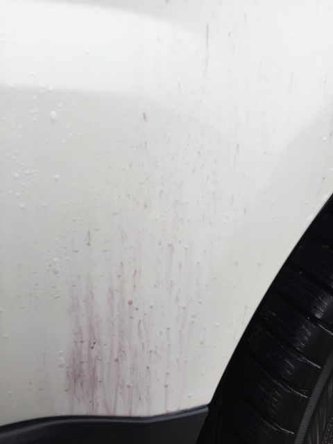 A&D detailing Range Rover Sport 2elbj4p