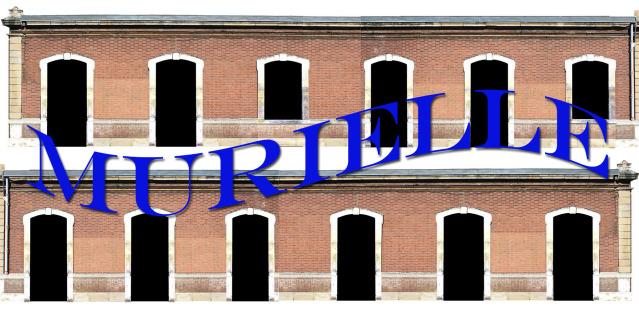 N - Gare d'Elbeuf ville (76) 2qwd1tx