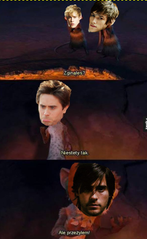 Forumowe memy... - Page 5 67tvn8