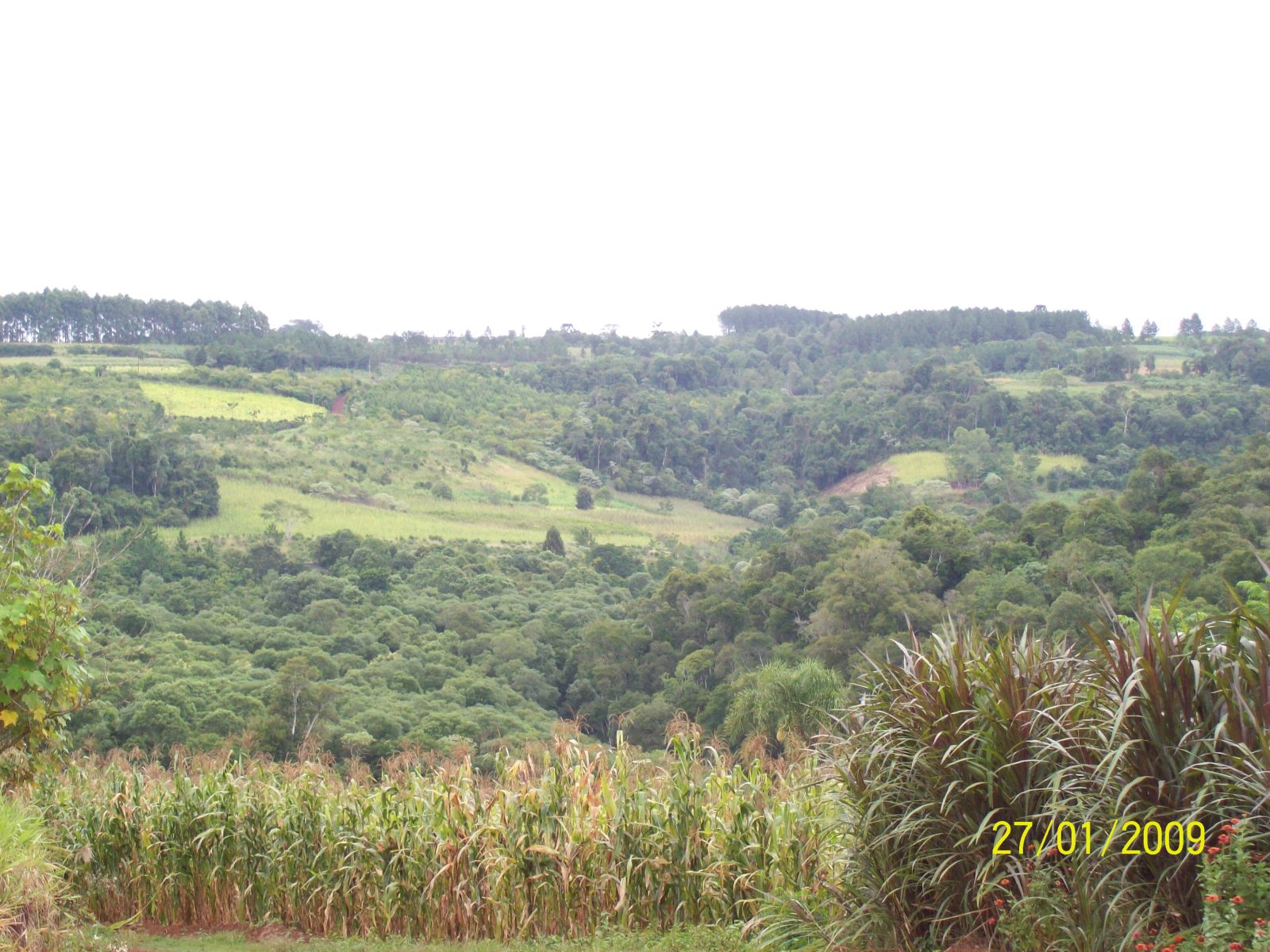 Informe de Campings en Misiones (ahora con imágenes) Nbu0xs