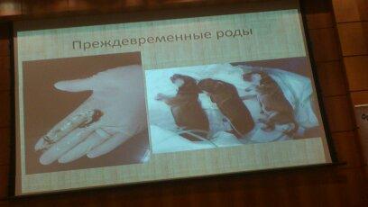 цикл семинаров на тему БЕРЕМЕННОСТЬ РОДЫ НЕОНАТАЛЬНЫЙ ПЕРИОД ЖИЗНИ ВАКЦИНАЦИИ  Vpx5rs