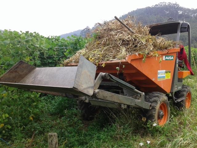 Fotos de agria 9900 E Y dumper Ausa 11hceia