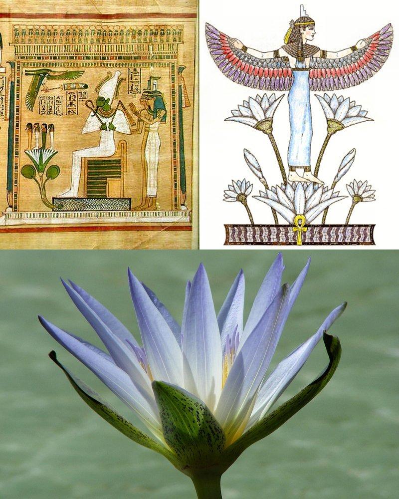 Osiris e Isis  CFK 122gr3o