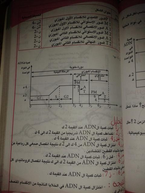 تمارين الفصل الثاني - علوم تجريبية - 28i3m6f