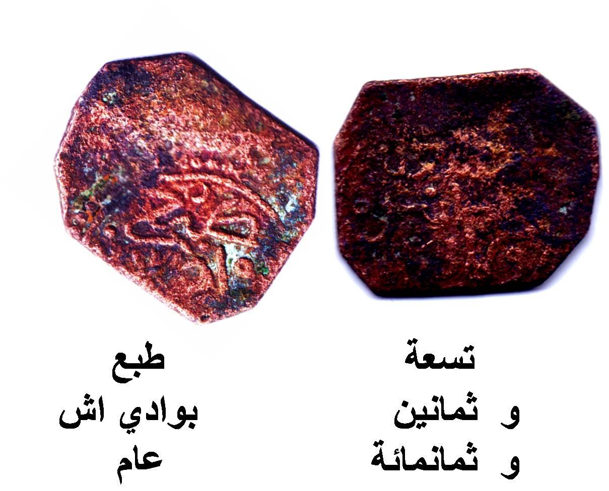 Felus nazarí de Guadix, año 889H 2di3eyc