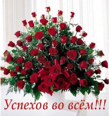 Поздравляем С Днем Рождения Нину Станиславовну! 2ibf6oo