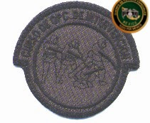 Uniformes del Ejercito y Fuerza Aérea Mexicanos. - Página 9 2rniyb8