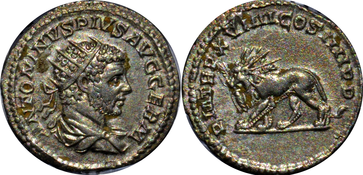 Monedas con leones 2uhtwcn