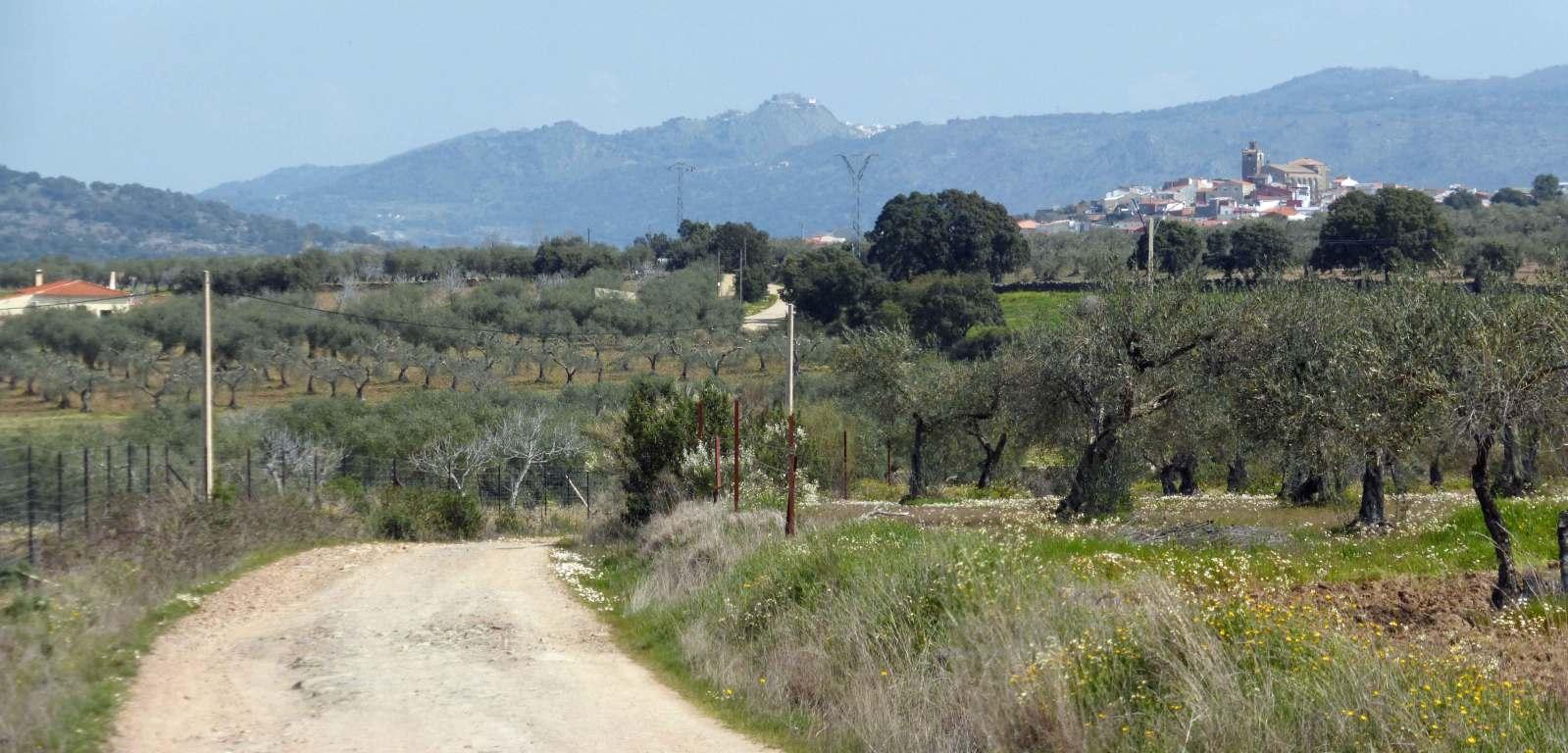 Vía de la Plata-Camino Sanabrés (Sevilla-Santiago). 30c55x3