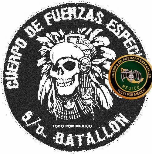 Uniformes del Ejercito y Fuerza Aérea Mexicanos. - Página 9 B5lc0i