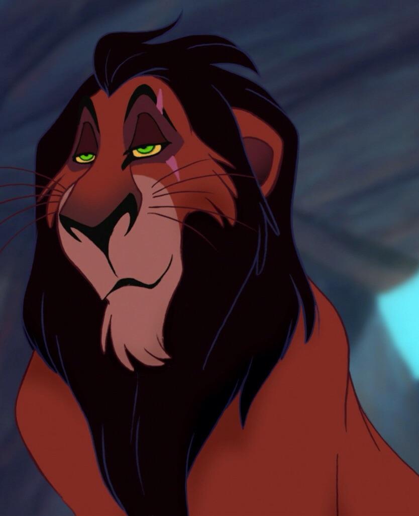 el color de los leones  Ifwo3s