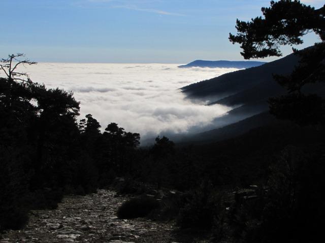 20121222 - LA PINAREJA (2.197 m) Mms8dy