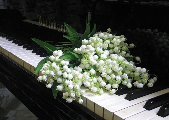 Поздравляем с днем рождения Соломахину Ирину Александровну Ngoqdd