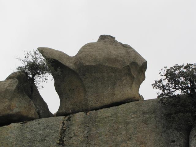 20120505 - PEDRIZA - SENDA MAESO Sphwtv
