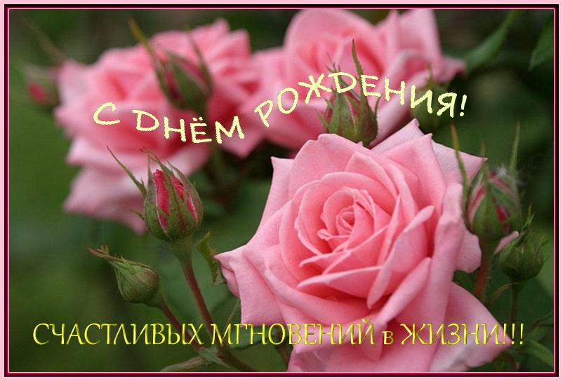 Поздравляем с Днем Рождения Ларису Борисовну! Vex64l