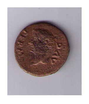 Semis de Colonia Rómula Vhrj1e
