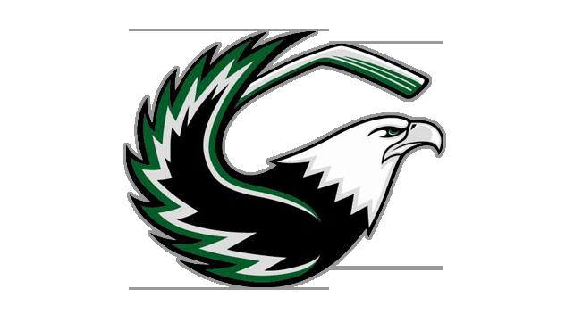 Līgas un Komandu logo Zyhmde