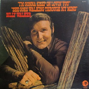 Billy Walker - Discography (78 Albums = 95 CD's) 20ihopi