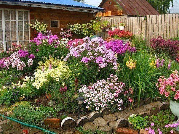 Садоводство и цветы - Страница 2 20s88dk