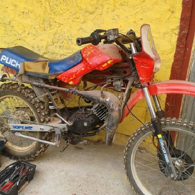 Puch TZX                                       23kw5fo
