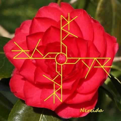 Blómið(цветок, который открывает пути).Автор Nereida   244z6o6