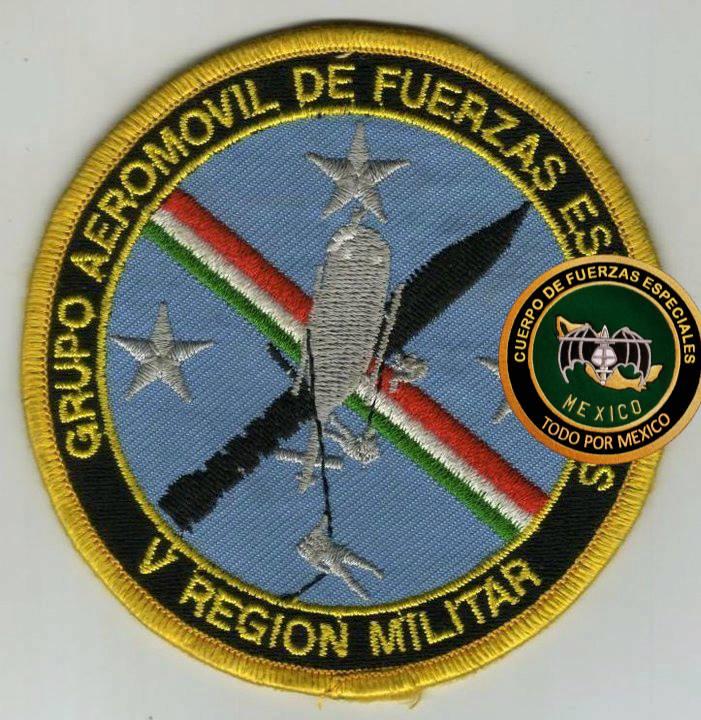 Uniformes del Ejercito y Fuerza Aérea Mexicanos. - Página 9 24z9f9d