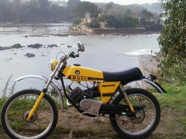 Minicross Super (La más buscada por mi) 256shu1