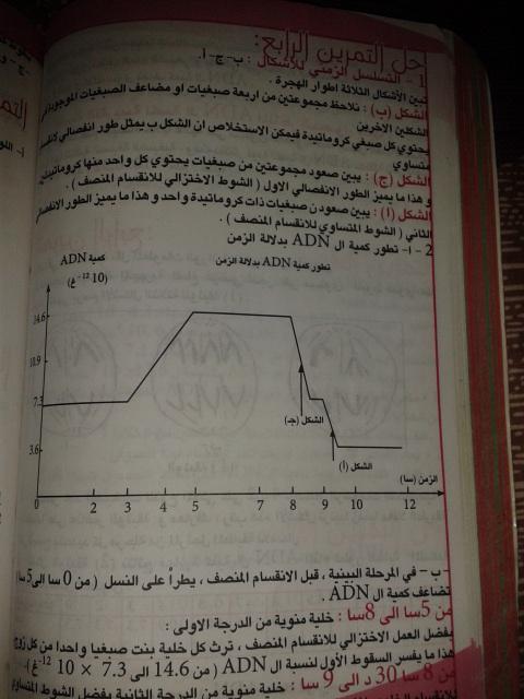 تمارين الفصل الثاني - علوم تجريبية - 2cxgp69