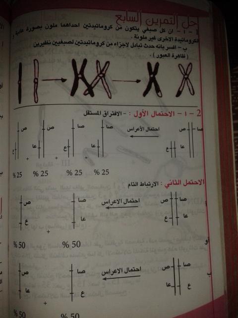 تمارين الفصل الثاني - علوم تجريبية - 2iux5pg