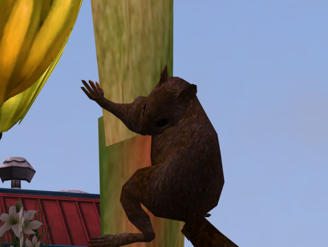 Topics tagged under squirrel on User - Made Creations 2qx6xp3